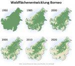 Waldflächenentwicklung Borneo